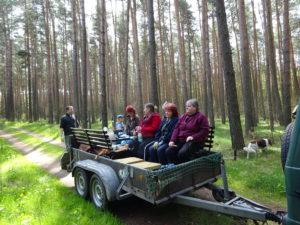 "Aktion ""Sauberer Wald"""
